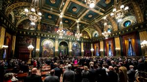 The information deleted from Senate documents included details on the purpose of the chamber's expenses, including travel, meetings, and conferences.