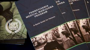 The public could soon know for the first time how many patients use medical marijuana to treat opioid use disorder in Pennsylvania, one of the few states to specifically endorse that treatment option.
